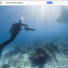 Barrier Reef: Street View taucht ab