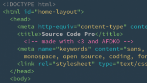 Der neue Font Source Code wurde extra für Source Code entwickelt.
