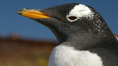In Linux 3.6 fallen die Änderungen eher übersichtlich aus.