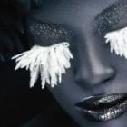 Adobe: Update für Photoshop Lightroom 4 und Camera Raw