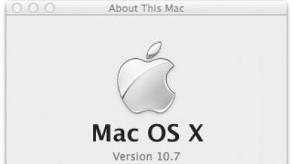 Update auf neue Lion-Version lässt teilweise Backups abbrechen.