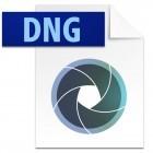 Adobe DNG: Digitales Negativ mit verlustbehafteter Kompression