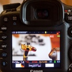 Magic Lantern: Alternative Firmware macht Canon 7D zur Profivideokamera