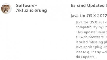 Update auf Java SE 6  Version 1.6.0_37 in der Softwareaktualisierung von Lion