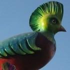 Test Ubuntu 12.10: Quantal Quetzal ist noch ziemlich langsam