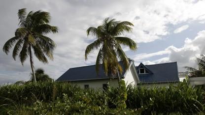 Das Haus von John McAfee in San Pedro
