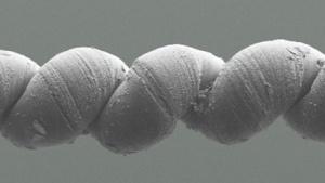 Wissenschaft: Künstliche Muskeln aus Nanogarn