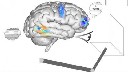 Spaun: simuliertes Gehirn mit virtuellem Auge und Roboterarm