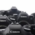Auflösung und Geschwindigkeit: Canon 7D Mark II für Sport- und Landschaftsfotografen