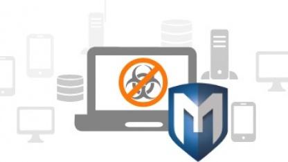 Mit Metasploit 4.5 Pro lassen sich Phishing-Attacken simulieren.