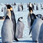 Linux 3.8: Code für i386 wird ausgemistet