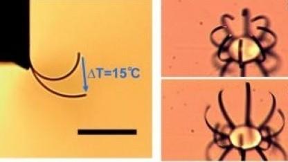 Mikroaktor: stärker als menschliche Muskelzellen
