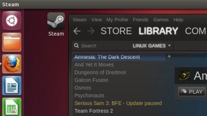 Steam für Linux
