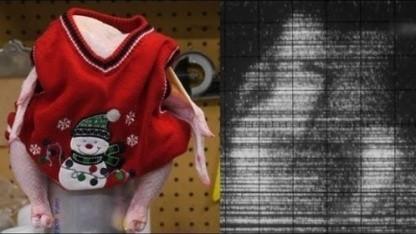 Ein Huhn im Selbstbau-Körperscanner von Valve-Mitarbeiter Ben Krasnow