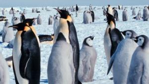 Die Kernel-Entwickler misten Code in Linux 3.8 aus.