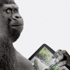 Kratzfeste Displays: Corning zeigt Gorilla Glass 3