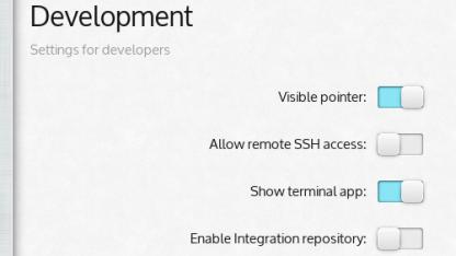 Das Integration-Repository ist über grafische Einstellungen erreichbar.
