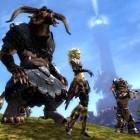 Arena.net: Entwickler über die Pläne für Guild Wars 2