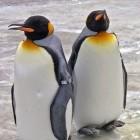 Secure Boot: Signierte ELF-Dateien sollen Linux absichern