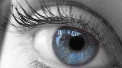 Kommt die Augensteuerung für Spiegelreflexkameras wieder?