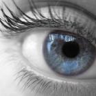 Sony: DSLRs sollen Augensteuerung zum Scharfstellen nutzen