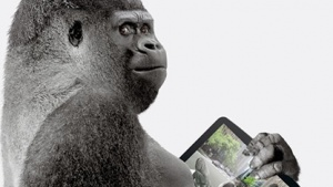 Kratzfeste Displays: Corning zeigt Gorilla Glass 3