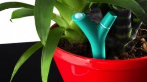 Parrot Flower Power: Pflanzen rufen per Bluetooth um Hilfe