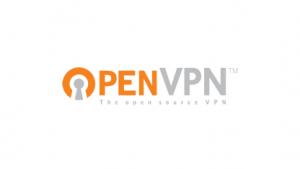 OpenVPN 2.3.0 unterstützt IPv6.