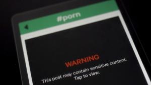 Video-Sharing-App Vine zeigt auch pornografische Inhalte.