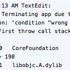 Mountain Lion: Absturz in vielen Anwendungen mit acht Zeichen Text