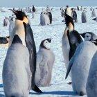 Linux 3.8: Ende für die 386er
