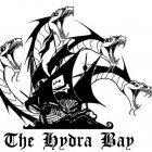 Pirate Bay: Filesharing-Website wird norwegisch und spanisch