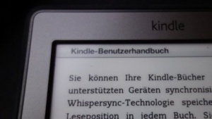 Kindle-Reader