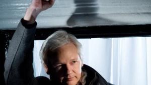 Wikileaks Party: Julian Assange kandidiert für den australischen Senat