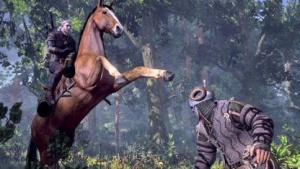 Artwork von The Witcher 3: Wilde Jagd