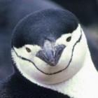Linux 3.10: Kernel ohne Ticks