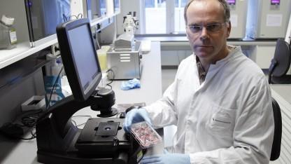 Mark Post im Labor (2011): Burger aus 20.000 Fleischstreifen