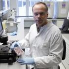Stammzellen: Teure Boulette aus dem Reagenzglas