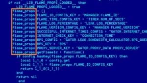 Code der Cyberwaffe Flame