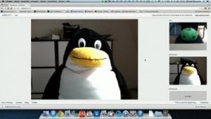 Videochat im Browser mit Palava