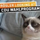 Piratenpartei: Mit Grumpy Cat in den Bundestag