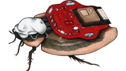 Roboroach: Schabe nicht im Lieferumfang