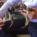 Robotik: Schneller Roboter mit Katzenbeinen