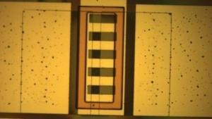 Beschichteter Sensor in der Lösung: Abstoßung früh erkennen