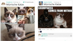 Socl: Microsofts soziales Netzwerk wird zum Meme-Generator
