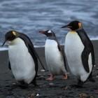 Linux: Kernel 3.11 stopft das Sommerloch