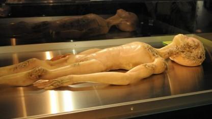 Ein autopsierter Area-51-Alien, aber kein echter - zu seinem Glück.