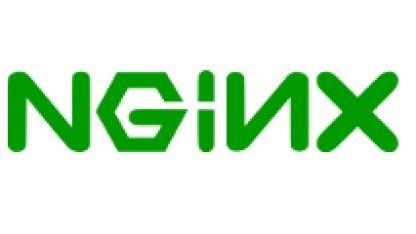 Das Nginx-Logo