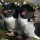 Linux 3.12: Bessere Taktung für mehr Leistung