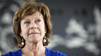 Neelie Kroes will einen einheitlichen EU-Telekommunikationsmarkt.